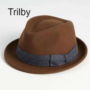 Hut-Trilby-der-richtige Hut-fuer-mich-diller-yourself