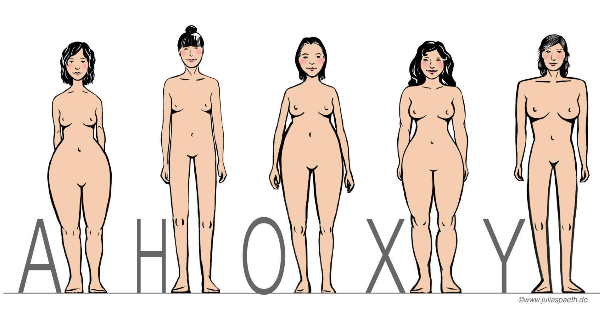 Blazer Für Verschiedene Figurtypen